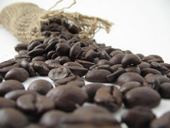 roasted-bulk-coffee-beans1-240w